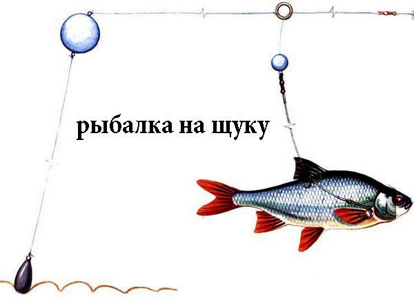 http://mopppoppp.moy.su/--zhksr--/-hs1j1kjd-/shum_10sh.jpg