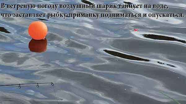 http://mopppoppp.moy.su/--zhksr--/-hs1j1kjd-/shum_8sh.jpg